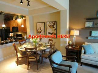 Austin Apartment Finders   We Are A Local Austin Apartment Finder Compamy  Who KNOWS AUSTIN TX